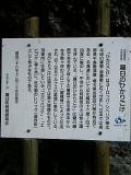 DVC00189.jpg