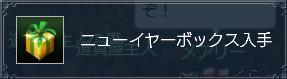 ニューイヤーボックス.JPG