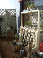 garden1020-shelf.jpg