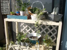 garden1020-shelftop.jpg