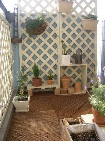 garden1020.jpg