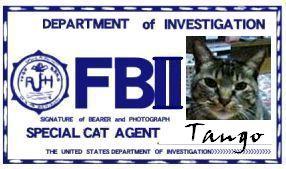 CAT連邦捜査官 NO.014 「Tango」