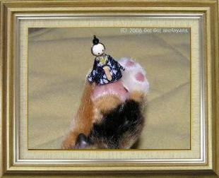 ねこ 猫 肉球祭り 05番