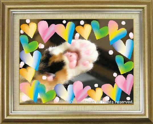 ねこ 猫 肉球祭り 36番