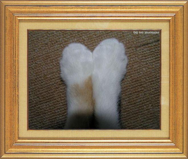 ねこ 猫 猫の手祭り 04番