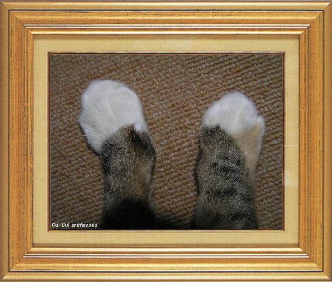 ねこ 猫 猫の手祭り 05番