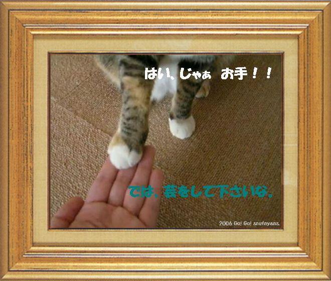 ねこ 猫 猫の手祭り 07番