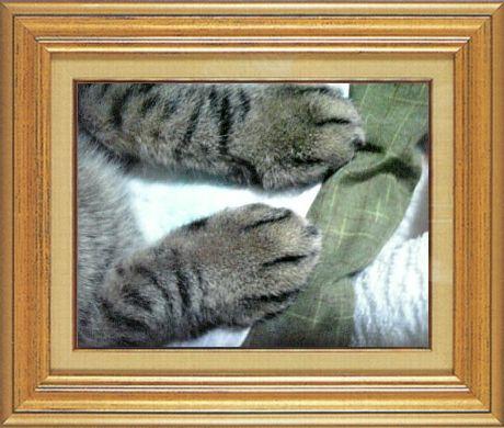 ねこ 猫 猫の手祭り 14番