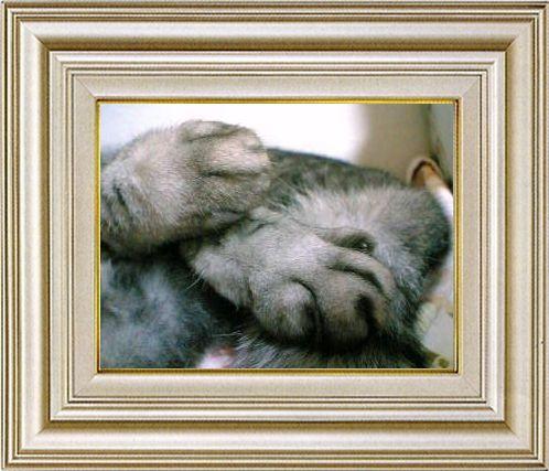 ねこ 猫 手束祭り 03番