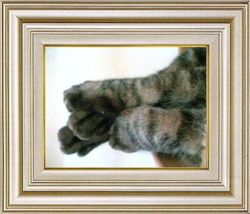 ねこ 猫 手束祭り 04番
