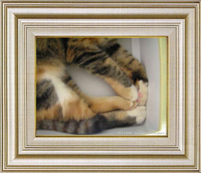ねこ 猫 手束祭り 07番