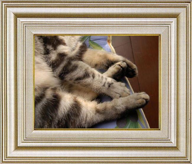 ねこ 猫 手束祭り 08番