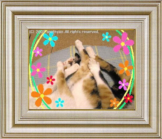 ねこ 猫 手束祭り 10番
