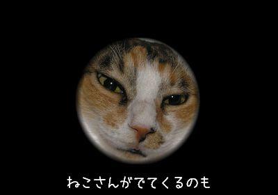 猫さんがでてきても