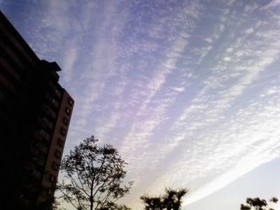 飛行機雲02