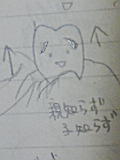 20080409000629
