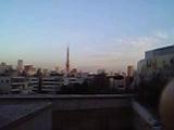 Tokyo tower romance