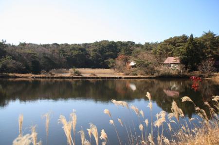 20071124_11.jpg