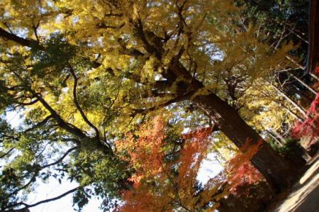 20071124_20.jpg