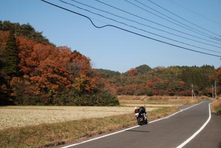 20071124_24.jpg