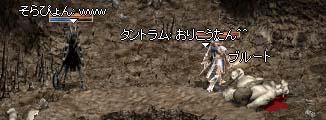20050113115344.jpg