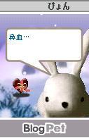 20050215084812.jpg