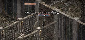 20050306-8.jpg