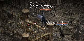 20050311-7.jpg