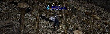20050328-6.jpg