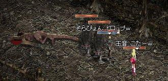 20050411-3.jpg