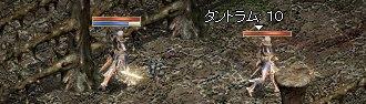 20050616-4.jpg