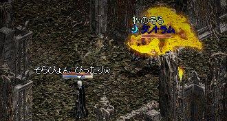 20050918-7.jpg