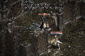 20050920-7.jpg