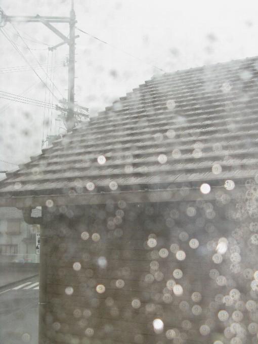 2011-9台風