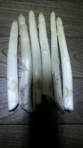 ホワイトアスパラ