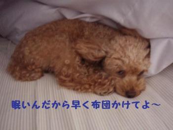 眠いそら (3)