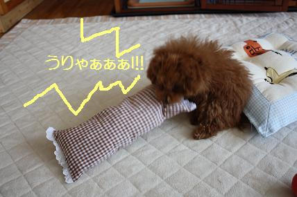 hanaちゃん090602 004