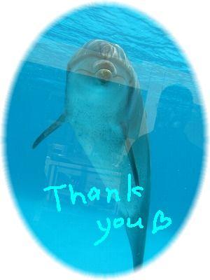 fuji thank you