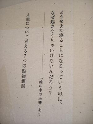 CIMG1907.jpg