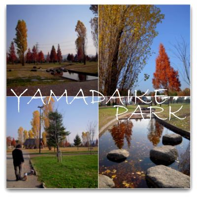 Picnik yamada