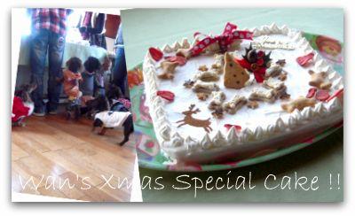 Picnik cake