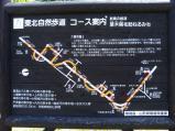 田沢(3)