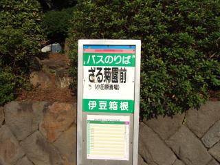 ざる菊園 バス停
