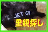 jetsatooya-1