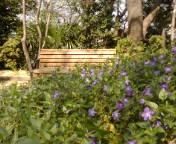 お花とベンチ