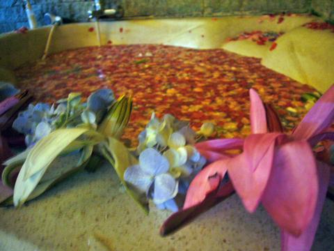 お花がいっぱい…