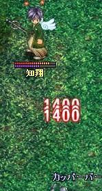 20061117210656.jpg