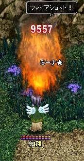 20070203215409.jpg