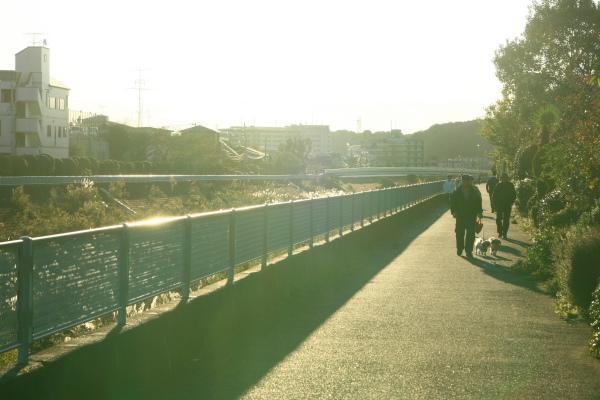 20091103早淵公園