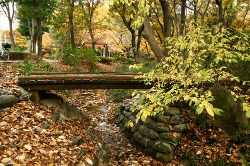 20091128茅ヶ崎公園3